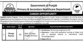 Nursing Jobs for Male & Female in Punjab Healthcare Department