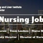 Nursing Jobs at Pakistan Kidney and Liver Institute (PKLI), Lahore